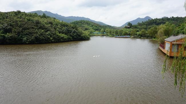 南山竹海.JPG